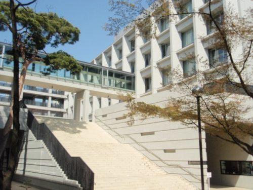 三浦祐太朗 大学