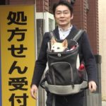 ハナ動物病院[太田快作]獣医師は結婚して妻子供は?プロフィール経歴も調査!